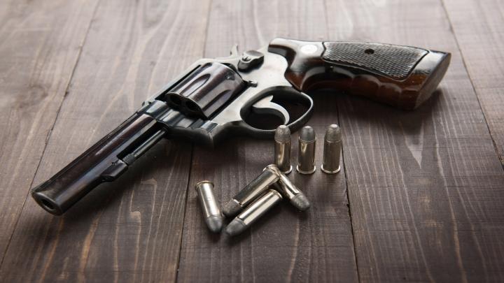 América Latina y el porte legal de armas de fuego | LexLatin
