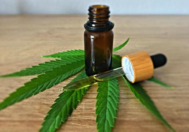 El panorama de la cannabis medicinal en Latinoamérica - LexLatin
