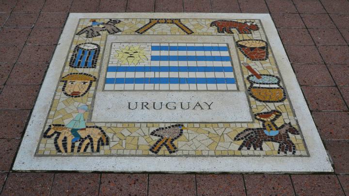 """Corina Bove: """"Uruguay es un  mercado chico pero sofisticado"""""""